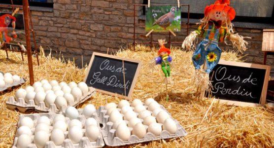 Fira de l'ou
